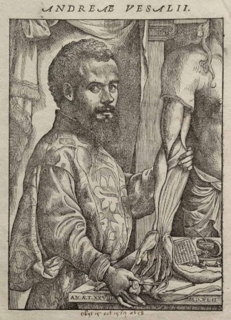 Portrait of Andreas Vesalius from 1543.
