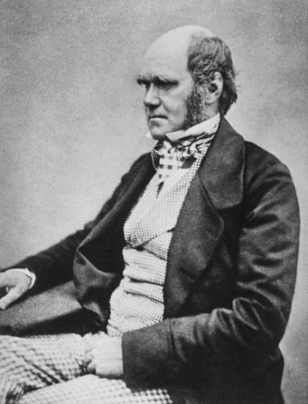 A photograph of Charles Darwin by Henry Maull and John Fox, probably taken in 1854.