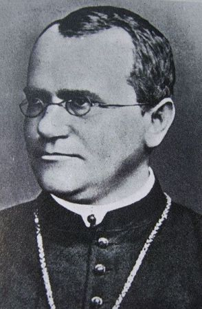 Undated photograph of Gregor Mendel.