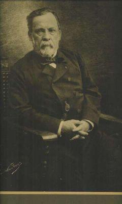 An undated photograph of Louis Pasteur, taken by Nadar.