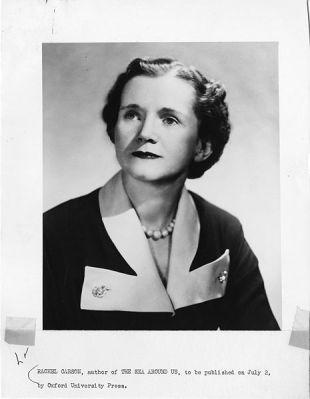 Rachel Carson in 1951.