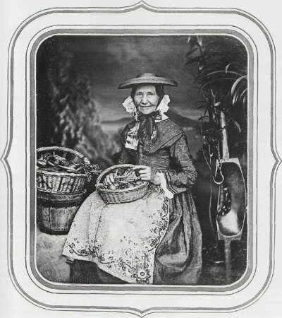 Stelzner - Mother Albers.