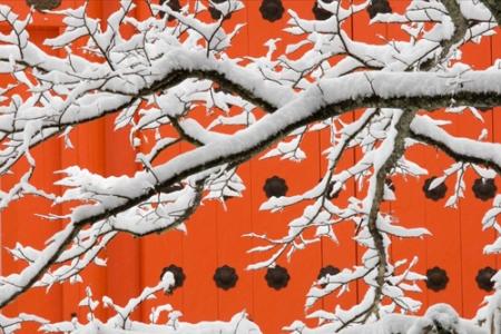 art wolfe koyasan winter 2