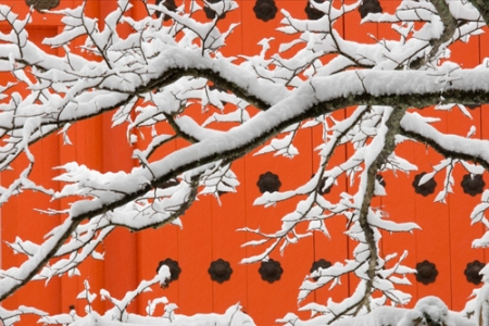 art wolfe koyasan winter 2