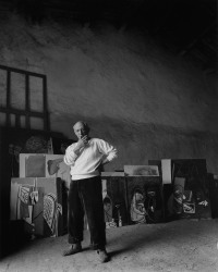 picasso arnold newman