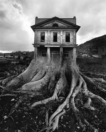 uelsmann house tree