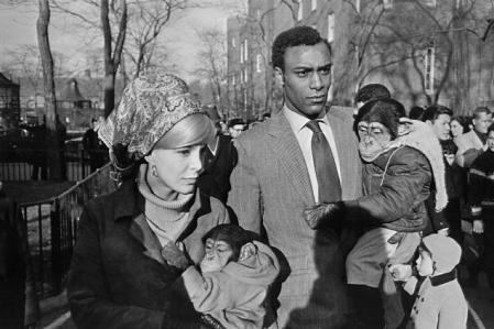 winogrand_central_park_zoo