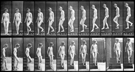 muybridge nude descending a staircase