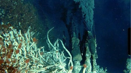 A hydrothermal vent with black smokers and a biological community with large numbers of tube worms.