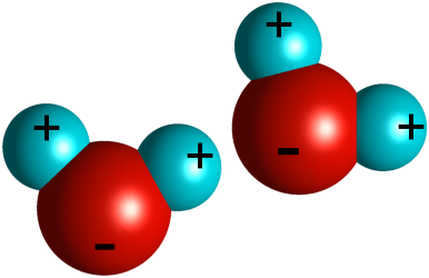 A model of two water molecules.