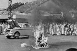 vietnamese self immolation