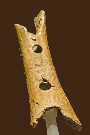 The Divje Babe Flute is a portion of a cave bear femur with holes in it, found in a Slovenian cave.