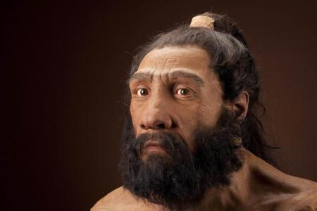 Artist John Gurche's impression of an adult male Homo neanderthalensis.