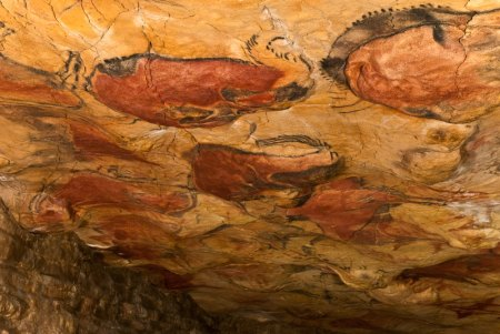 Paintings on the ceiling of the Altamira Cave.
