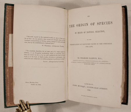 essay on the origin of species The origin of species study guide contains a biography of charles darwin, literature essays, a complete e-text, quiz questions, major themes, characters, and a full summary and analysis.