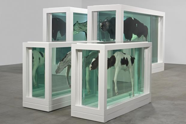 mother-and-child-divided-damien-hirst